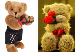 valentine s day 11 teddies that you can gift to your loved