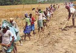 mnrega scam hc directs up to provide staff help to cbi