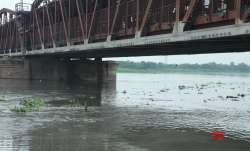 Yamuna crosses danger mark