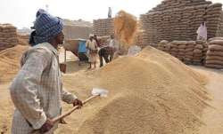 Centre allows early procurement of paddy in Punjab, Haryana