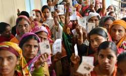 75.25% voting in Panaji Assembly bypoll / Representational
