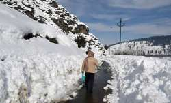 All major roads cleared of snow in Kashmir, LG reviews