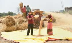Govt extends crop loan repayment date till Aug 31; prompt re-payers to benefit