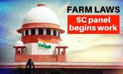 supreme court panel