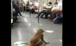 Watch: Monkey takes fun ride in Delhi Metro, video goes
