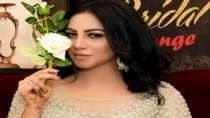 Arshi Khan: I am going to give sex education to my children