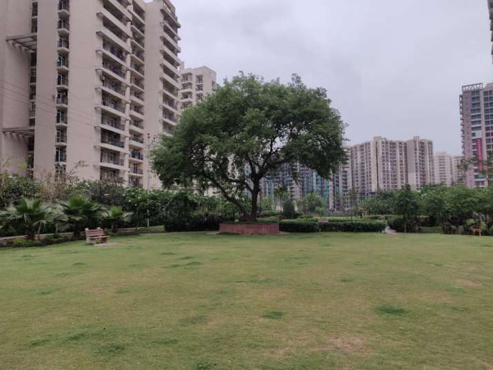 Park in Greater Noida, Uttar Pradesh