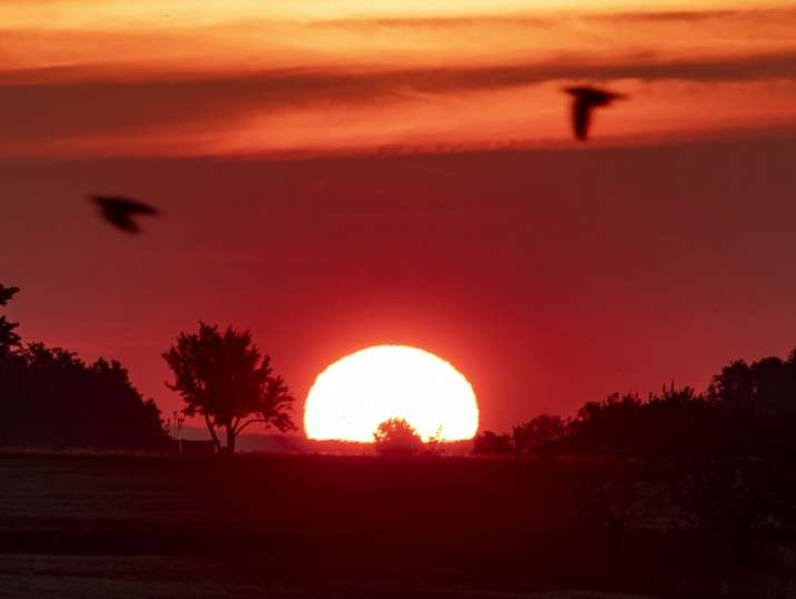 Europe reels under heatwave, 3 killed in