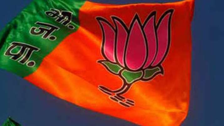 Delhi BJP leader booked for molesting, assaulting woman