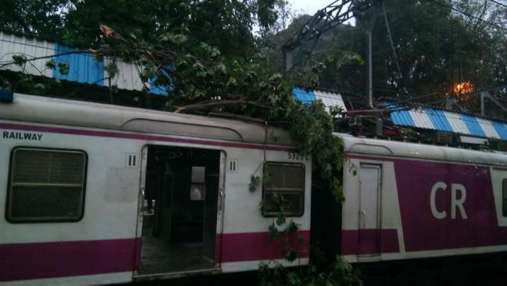 Tree branches fall on stationary local, services briefly hit